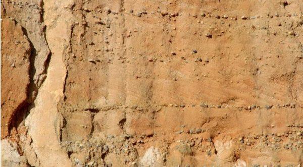 Figura 7.- Frente de una antigua arenera, donde se aprecia una peculiar ordenación geométrica de las láminas de arena, que se disponen inclinadas hacia la derecha, en franjas limitadas por hileras de cantos. Esta disposición, denominada laminación cruzada, se originó como consecuencia del avance de las dunas subacuáticas en el lecho de los ríos, que circulaban de izquierda (SO) a derecha (NE), donde desembocaban al mar de Tethys. (Foto: A. Carrera). Fuente: Díez Herrero y Martín Duque (2005).