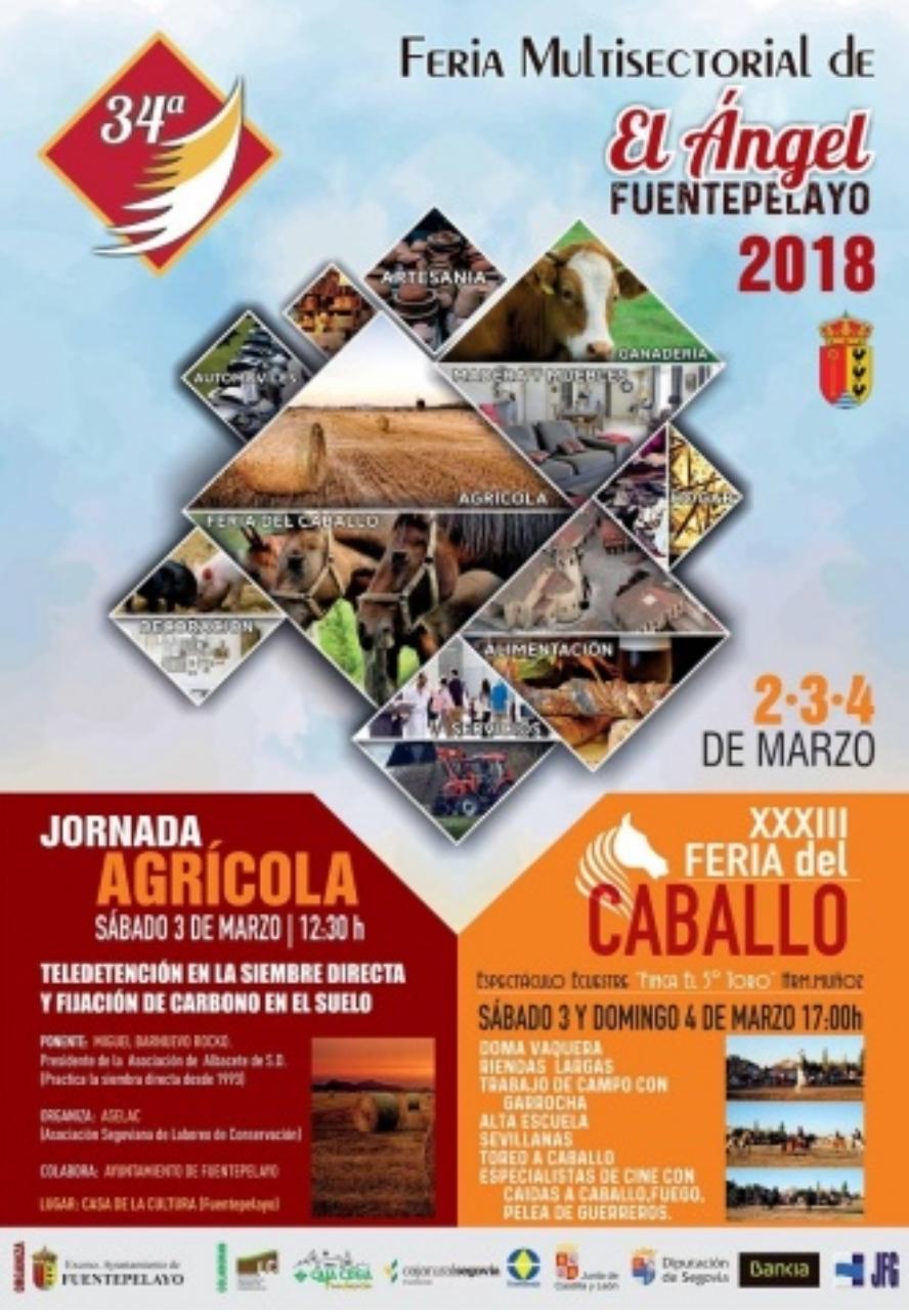 Feria del Ángel. Fuentepelayo. Segovia.