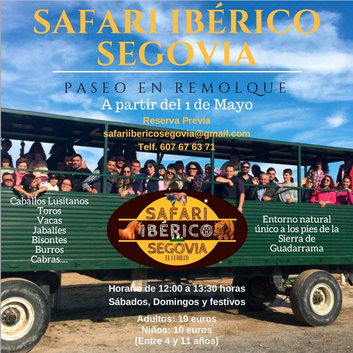Safari Ibérico de Segovia. Bisontes. Turismo activo