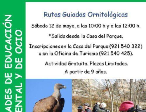 – Día internacional de la Aves. Parque natural Hoces del Río Duratón.