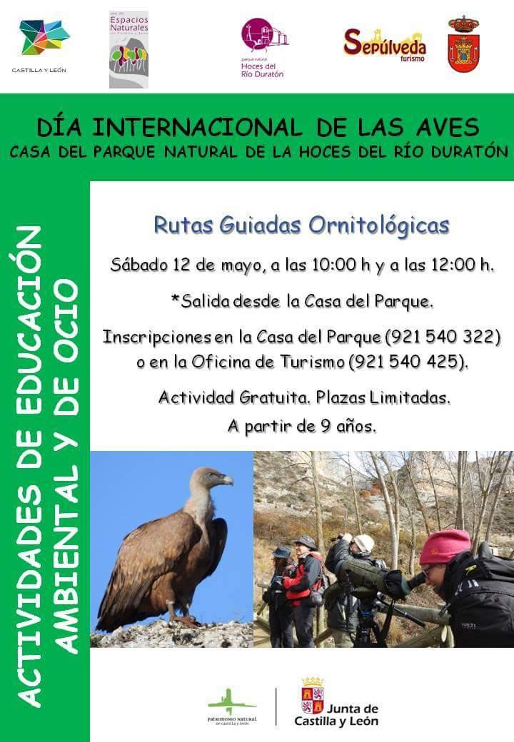 Día internacional de la Aves. Parque natural Hoces del Río Duratón.