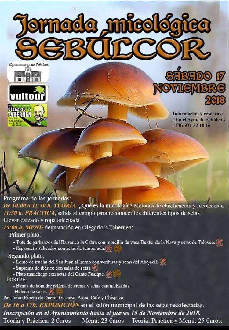 Jornada Micológica en Sebulcor. Segovia