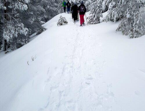 – Navafría Esquí. Actividades en la nieve.