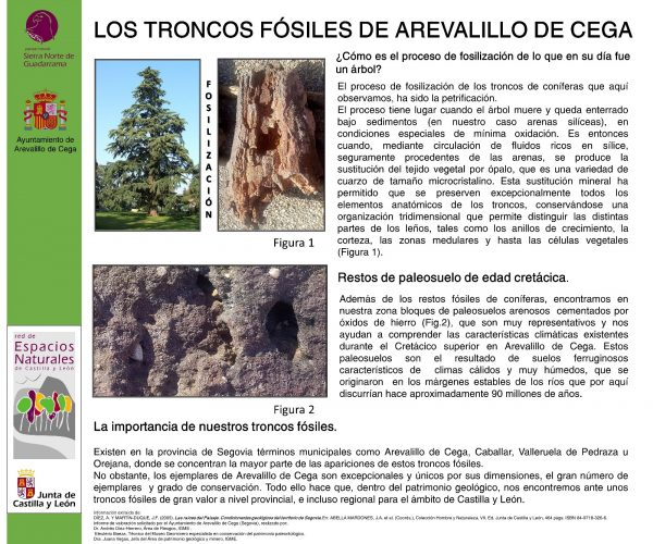 PANELES INFORMATIVOS DE AREVALILLO DE CEGA