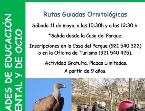 Día Internacional de las Aves. Rutas guiadas Ornitológicas.