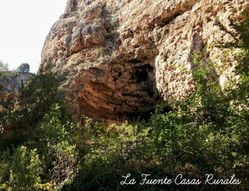 – Senderismo en el Parque Natural Hoces Del Río Duratón.
