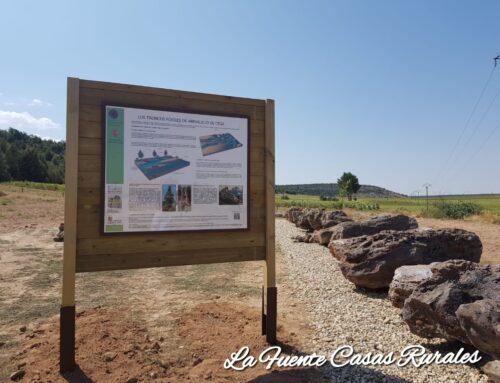 – Troncos Fósiles de Arevalillo de Cega.