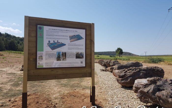 Troncos Fósiles de Arevalillo de Cega
