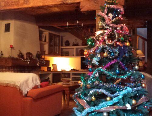 – Oferta Navidad 2019. Casas rurales La Fuente. Segovia.