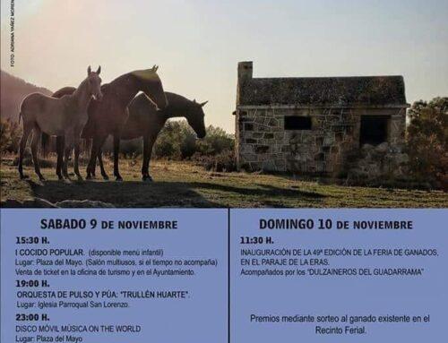 – 49ª Feria de ganado Navafría.