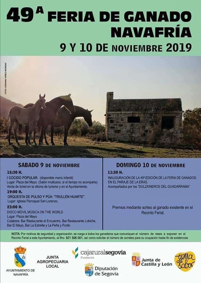 49 Feria de ganado Navafría
