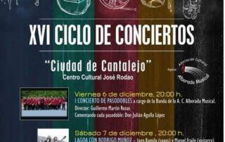 """XVI Ciclo de Conciertos """"Ciudad de Cantalejo"""""""