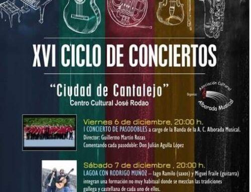 – XVI Ciclo de Conciertos «Ciudad de Cantalejo».