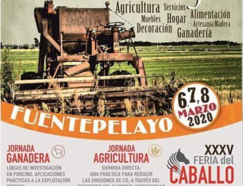 – XXXIV edición de la Feria El Ángel en Fuentepelayo. Segovia.