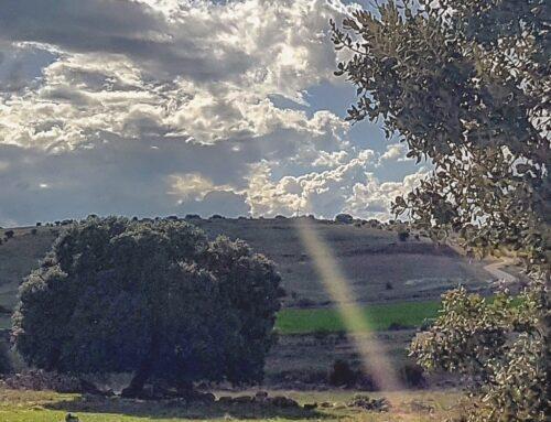 – El Cubillo. Segovia