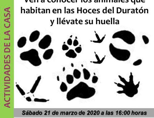 – Casa del Parque del Duratón. Actividades para niños.