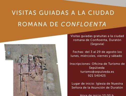– Ciudad Romana de Confloencia. Duratón.