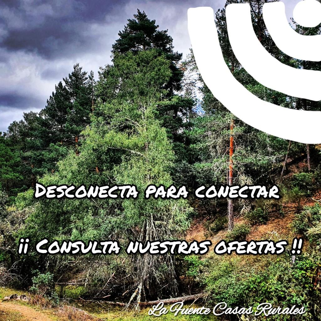 casas rurales para 4 personas casas rurales para 6 personas casas rurales para 2 personas Segovia