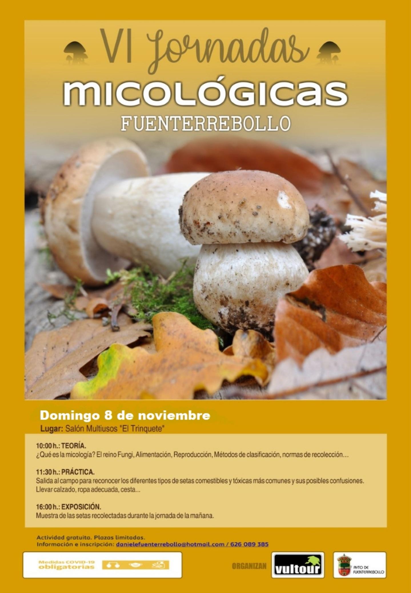 VI Jornadas Micológicas de Fuenterrebollo