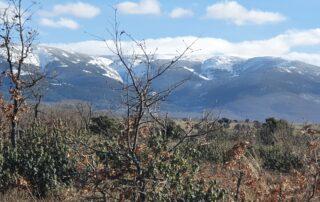 Ruta del Arcipreste de Híta. Sierra de Guadarrama. Segovia.