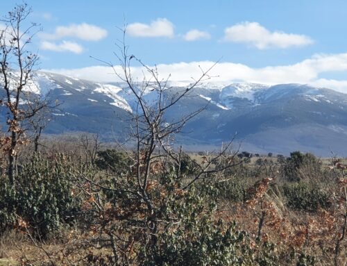 – Ruta del Arcipreste de Hita. Segovia.