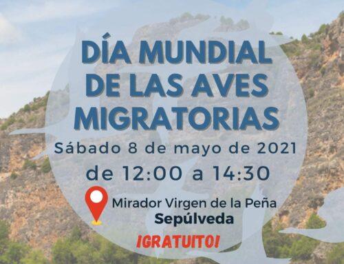 – Día Mundial de las Aves Migratorias.