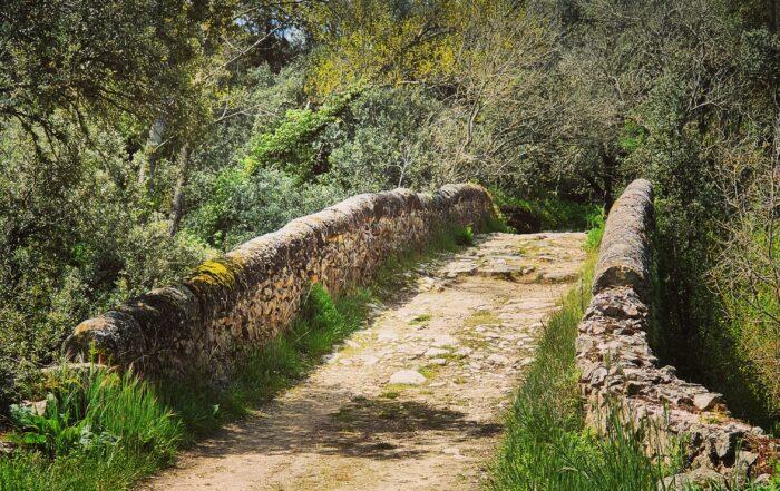 Rutas BTT por la provincia de Segovia