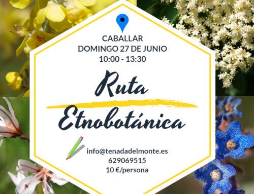 – Ruta etnobotánica en Caballar.