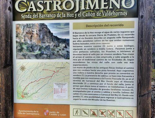– Arrecife de Castrojimeno. Segovia.