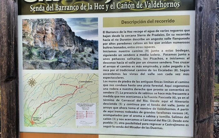 Arrecife de Castrojimeno. Segovia