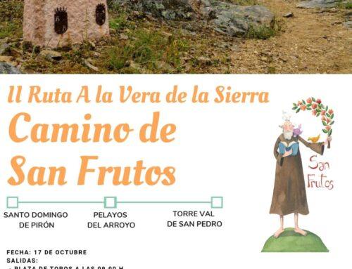 – Camino de San Frutos.