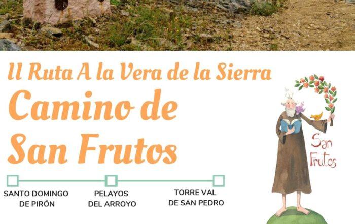 Camino de San Frutos